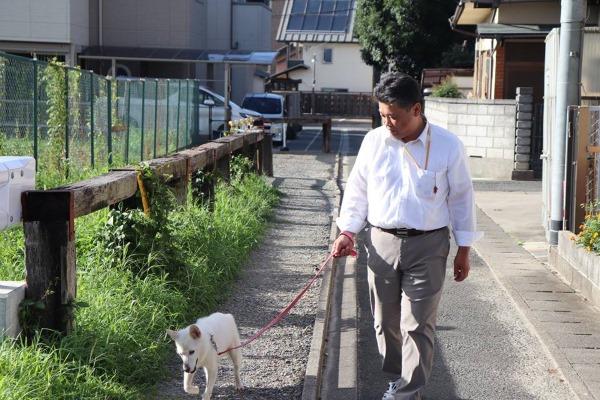犬の散歩(保険外)の様子 やましなぐらし