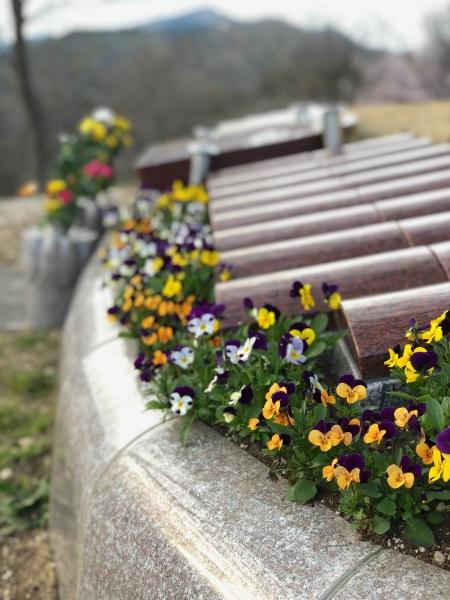 花に囲まれた個別のプレートで眠る